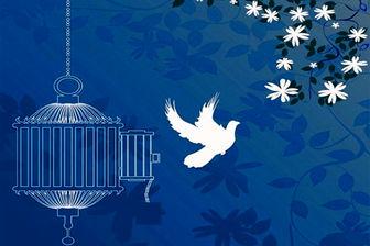 آزادی ۸۱ نفر از زندان مرکزی یزد در ۶ ماه نخست امسال