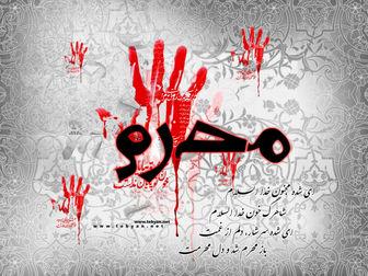 آداب ماه محرم در کلام امام رضا(ع)
