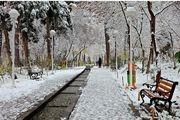 زیبایی های مشهد در زمستان