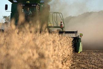 کشاورز کارت کفاف هزینههای کشاورزان را نمیکند