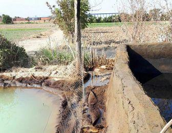 نشت نفت به چاههای آب کشاورزی اطراف پالایشگاه نفت شهید تندگویان
