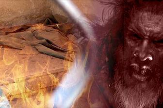 آیا پیامبر اسلام(ص)، معاویه را نفرین کردند که او هرگز سیر نشود؟!